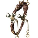 Cavemore by Bent Branderup a combination of a cavesson and hackamore