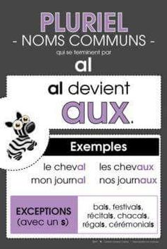 Le pluriel des noms 2/3 French Teaching Resources, Teaching French, Teaching Tools, Core French, French Class, French Language Lessons, French Lessons, How To Speak French, Learn French