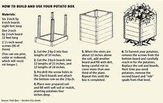 cool way to grow potatoes