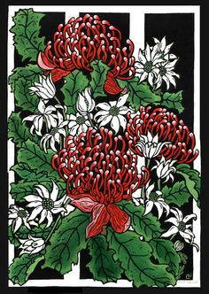 Waratahs & Flannel Flowers 2001 by Lynette Weir Australian Wildflowers, Australian Native Flowers, Australian Artists, Illustration Blume, Botanical Illustration, Linocut Artists, Lino Art, Flannel Flower, Flora