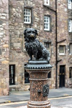This is the Greyfriars Bobby Statue. This travel itinerary for 4 days in Edinburgh, Scotland has the best Edinburgh itinerary for your trip to Scotland. It has everything from Edinburgh Castle to Edinburgh University and more. If you're looking for the best things to do in Edinburgh, this great Edinburgh itinerary has it all.