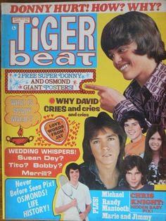 Image result for 1970s teenage magazines