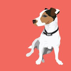 Dog - Jack Russell Art Print by Bluebutton Studio