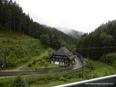 Schwarzwald - Floresta Negra - Alemanha! Por que não?