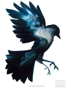 Stunning Bird Paintings by Adam S. Doyle