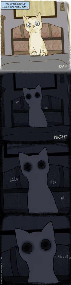 Creepy Peter- a black cat is worse, because you can't see them. Life Comics, Cat Comics, Funny Comics, Warrior Cats Comics, I Love Cats, Crazy Cats, Cute Cats, Funny Animal Pictures, Funny Animals