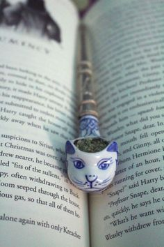 Study Break! #weed #cannabis #marijuana