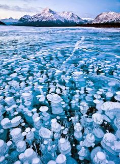 [F]カナダ・アブラハム湖。泡まで凍ってしまっている。