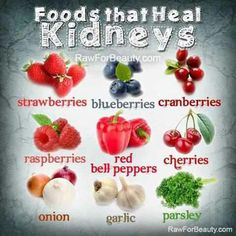 Herbs for Kidney Cleansing Here are the top 9 kidney-friendly foods, rich in antioxidants, that you may want to include in your regular diet.Here are the top 9 kidney-friendly foods, rich in antioxidants, that you may want to include in your regular diet. Kidney Detox Cleanse, Health Cleanse, Food For Kidney Health, Health And Nutrition, Kidney Foods, Health Tips, Health Benefits, Health Care, Kidney Friendly Foods