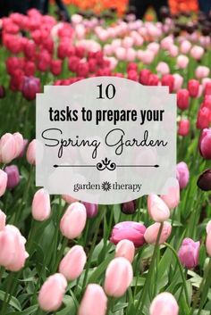 Flower Garden These are the 10 tasks to tackle in the spring to get your garden ready for the year! - Whether spring has sprung or just starting to peek through the winter cold, it will soon be time to get your spring garden planted. Spring Garden, Lawn And Garden, Witch's Garden, Gardening For Beginners, Gardening Tips, Container Gardening, Amazing Gardens, Beautiful Gardens, Vegetable Garden