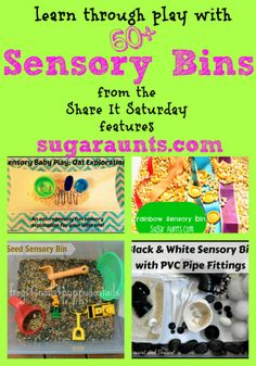 Sensory Bin ideas for learning and pretend play through the senses.