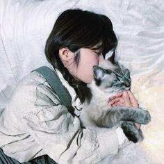 . メリークリスマス 世の中は幸せで溢れているな~ って仕事中に思いました おやすみなさい . . . #クリスマス #iphone#indies_gram#instagramjapan#多重露光 #reco_ig#星#ライト#クリスマスライト #猫#愛猫#ラグドール#シャム猫#cat #myroom#portrait#ポートレート #部屋撮り#写真好きな人と繋がりたい