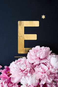 Flower Alphabet E by neon* fotografie as Poster Neon Photography, Poster Photography, Flower Alphabet, Alphabet Print, Alphabet Book, Alphabet Letters, Alphabet Wallpaper, Typography Wallpaper, Protest Posters