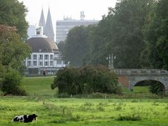 Blick vom Bürgerpark auf das Parkhotel. Im Hintergrund die Türme des Bremer Doms.