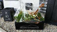 Granieten plantenbak met kunststof inzetbak voorzien van bedrijfslogo , voor meer informatie en mogelijkheden bezoek onze showroom