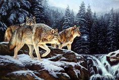Rosemary Millette Spirit of the Wild- Wolf