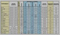 Analisi chimico-fisica del terreno, scelta di portainnesto e/o individuazione di incompatibilità.