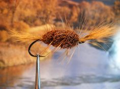Rusty Bomber, A Surface Steelhead Fly Presented by Salmonfly.Net