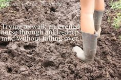 Trying to walk an excited horse through ankle-deep mud without falling over.
