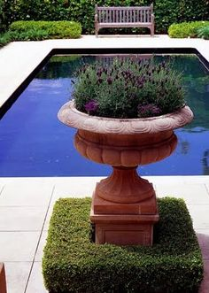 Brabourne Farm: Garden Urns - love the boxwood hedge surrounding the urn - lavender in the urn is a great idea as well
