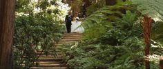 You might hear us mention filming at a beautiful location from time to time within our post but its surely the truth. Being a Bay Area based Wedding videographer… Our Wedding, Wedding Venues, Videographer Wedding, Nestldown Wedding, Wedding Linens, Lush Garden, Garden Bridge, Rustic Wood, Pond