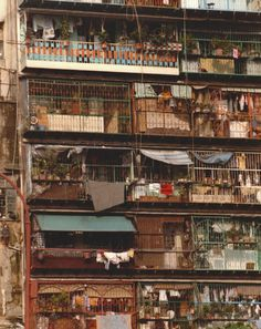 Kowloon Walled City inspired Friday Brown / Jungle Life 5 http://fqoto.com/ss2014-057-jungle-life-5.html