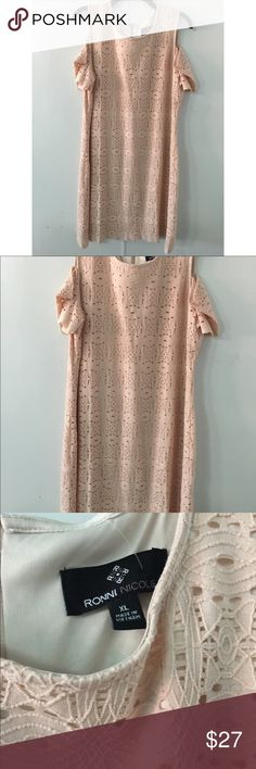 Blush Lace Dress Gorgeous Dress with shoulder cut offs, beige undergarment dress, lace design. Multiple sizes Blush Pink Color Ronni Nicole Dresses