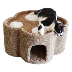 Features:  -Cat condo.  -Plush high grade carpet for your cats comfort.  -Small compact design.  -Cat paw print style.  -Arrives fully assembled ready to use.  -Made in the United States. Dimensions: