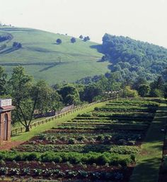 thomas jefferson garden