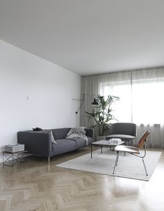 Living room with new curtains / Tota