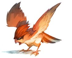 Watercolor Pokemon | Pidgeotto ! by Nicholas Kole, via Behance