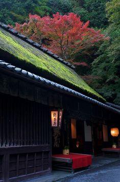 鳥居本紅葉(京都・嵯峨野)