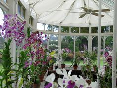#IgniteTheSpark with a private dinner in @Four Seasons Resorts Lanai Lodge Koele's Orchid House... just you, your sweetie and some sweet-smelling blooms.