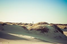 Amrum Impression 07 - Sugar Ray Banister