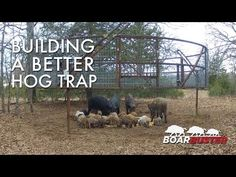▶ Introducing BoarBuster: A Better Hog Trapping System | Feral Hog Trap - YouTube