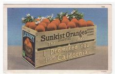 Sunkist Oranges Fruit Crate California by ThePostcardDepot on Etsy, $5.00