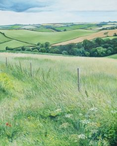 'View from the Meadow' - Oil on board by Hamish Baird. 50cm x 40cm. SOLD