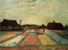 Bulb Fields - Vincent van Gogh, 1883,  National Gallery of Art, Washingon, DC