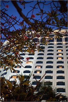 Sheraton Grande Sukhumvit Bangkok Review – Luxury Collection Hotel