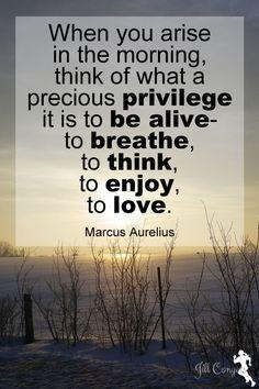 Life is a precious privilege. jillconyers.com #quote #marcusaurelius #believe