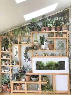 Indoor Plant Wall, Indoor Garden, Indoor Plants, Plants For Balcony, Indoor Plant Shelves, Room With Plants, Indoor Greenhouse, Hanging Plants, House Plants Decor