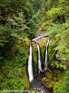 Gratitude on the Triple Falls Trail, Oregon