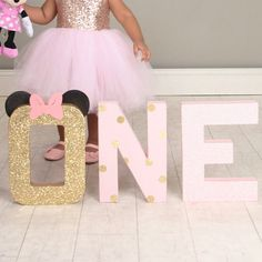 minnie mouse first birthday tutu cake smash photo shoot party decor decorations one 1st pink and gold