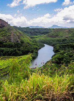 The very best things to see and do on Kauai including kayaking the Wailua River.