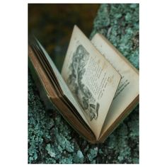 vintage, alternative and books image on We Heart It ❤ liked on Polyvore featuring filler