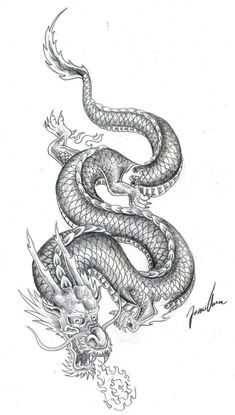 chinese dragon practice 2 by JonasOlsenWoodcraftYou can find Chinese dragon tattoos and more on our website.chinese dragon practice 2 by JonasOlsenWoodcraft Dragon Tatoo, Dragon Tattoo For Women, Dragon Tattoo Designs, Best Tattoo Designs, Dragon Sleeve Tattoos, Dragon Tattoo Forearm, Dragon Tattoo Drawing, Drawing Tattoos, Kunst Tattoos