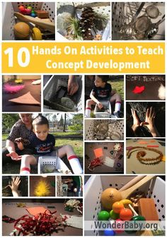 """Teach your blind student about the world through direct interaction! This is called """"concept development"""" and through hands on learning they can learn about textures, sizes, nature... all sorts of things!"""