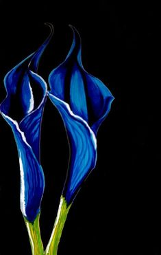 Georgia O'Keefe Flower Paintings - I love this painting she always paints so bold. Calla Lilies are one of my favorites too! Community Art, Flower Painting, O Keeffe Paintings, Artist, Georgia Okeefe, Painting, Paintings I Love, Love Art, American Artists