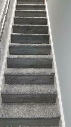 Most current Photos Carpet Stairs design Tips One of the fastest approaches to revamp your tired old staircase is to cover it with carpet. Carpet Staircase, New Staircase, Staircase Remodel, Modern Staircase, Staircase Design, Staircase Ideas, Carpet Runner On Stairs, Wood And Carpet Stairs, Stair Idea