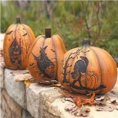 Samain:  Pumpkins for #Samain.
